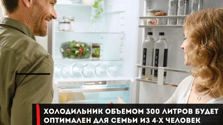 какой холодильник выбрать мнение